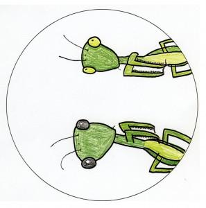 09阿藻珍味